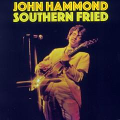Southern Fried - John Hammond