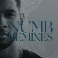 Numb Remixes - Usher