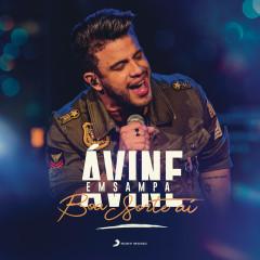 Boa Sorte Ái (Ao Vivo) - Avine Vinny