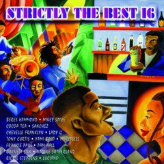 Strictly The Best Vol. 16 - Various Artists