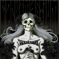 Assassins: Black Meddle, Pt. I - Nachtmystium