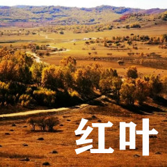 红叶 - Various Artists