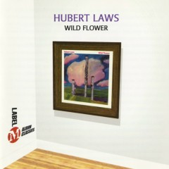 Wild Flower - Hubert Laws
