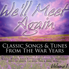 We'll Meet Again - Classic Songs & Tunes From The War Years Volume 1 - Various Artists