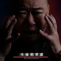 新吉乐图音乐作曲作品-生命的草原 - Various Artists