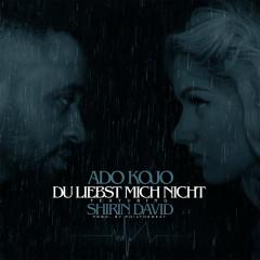 Du liebst mich nicht (EP) - Ado Kojo, Shirin David