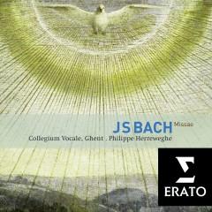 Bach : Masses BWV 233-235, Sanctus BWV 238 - Philippe Herreweghe