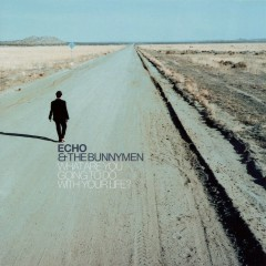 What Are You Going To Do With Your Life? - Echo & the Bunnymen