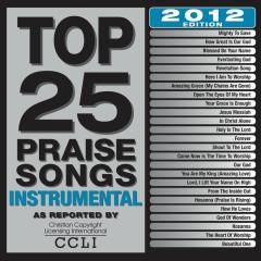 Top 25 Praise Songs Instrumental (2012 Edition)