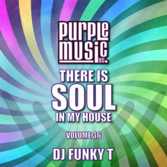 Funky T Presents There is Soul in My House, Vol. 36 - Various Artists