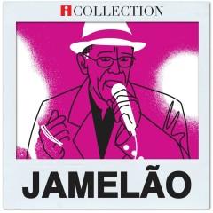 iCollection - Jamelao