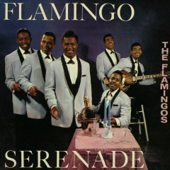 Flamingo Serenade - The Flamingos