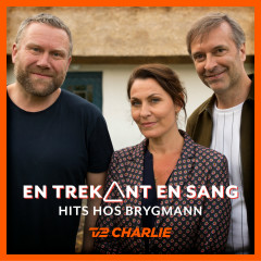 En Trekant En Sang 2 - Hits Hos Brygmann - Various Artists