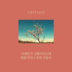Misemeonji Nappeum-Ilaneunde Beojkkoch-Ilani Doghangeosdeul-A (Single) - Tritops