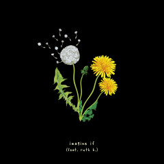 imagine if (feat. ruth b.) - Gnash, Ruth B.