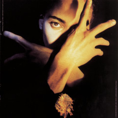 Neither Fish Nor Flesh a Soundtrack Of Love, Faith, Hope & Destruction - Terence Trent D'Arby