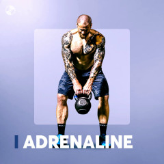 Adrenaline Workout