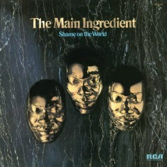 Shame on the World - The Main Ingredient