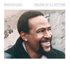 Dream Of A Lifetime - Marvin Gaye