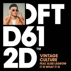 It Is What It Is (feat. Elise LeGrow) - Vintage Culture, Elise Legrow