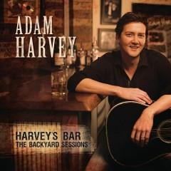 Harvey's Backyard Bar