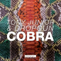 Cobra - Tony Junior, Dropgun