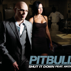 Shut It Down - Pitbull