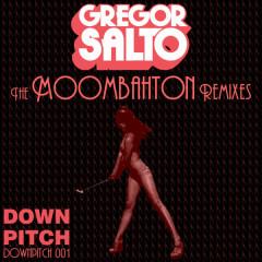 The Moombahton Remixes - Gregor Salto