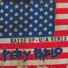 Raise Up (USA Remix) - Petey Pablo