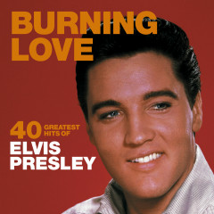 Burning Love: 40 Greatest Hits of Elvis Presley - Elvis Presley
