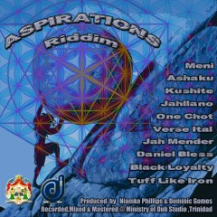 Aspirations Riddim - Various Artists