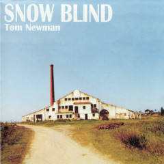 Snow Blind - Tom Newman