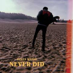 Never Did (Single)