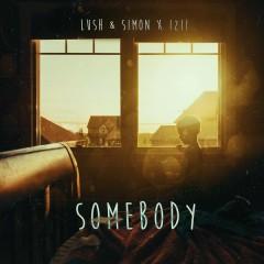 Somebody - Lush & Simon,IZII