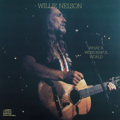 What A Wonderful World - Willie Nelson