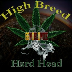 High Breed - Hard Head