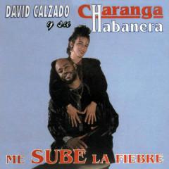 Me Sube la Fiebre (Remasterizado) - David Calzado y Su Charanga Habanera