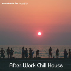 After Work Chill House - Various Artists