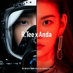 What You Waiting For - R.Tee, Anda