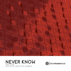 Never Know (Debris Remix)