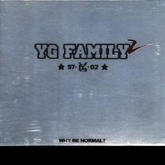 YG FAMILY 2 - YG FAMILY