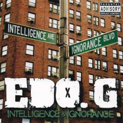 Intelligence & Ignorance - Edo.G