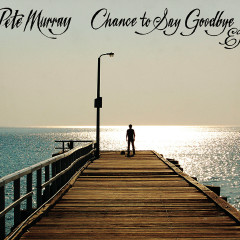 Chance To Say Goodbye - Pete Murray
