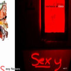 Sexy Noises Vol.1 - Various Artists