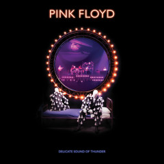 Delicate Sound of Thunder (2019 Remix) (Live) - Pink Floyd