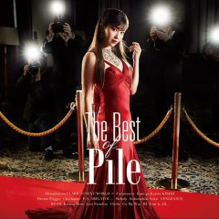 The Best of Pile - Pile