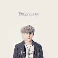 Prelude : Voice (Single) - Son Dong Won
