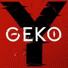 Y - GEKO,Afro B