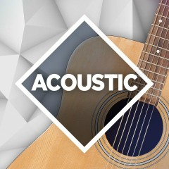 Acoustic: The Collection - Various Artists