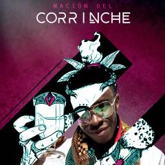Nacíon del Corrinche - Bomby